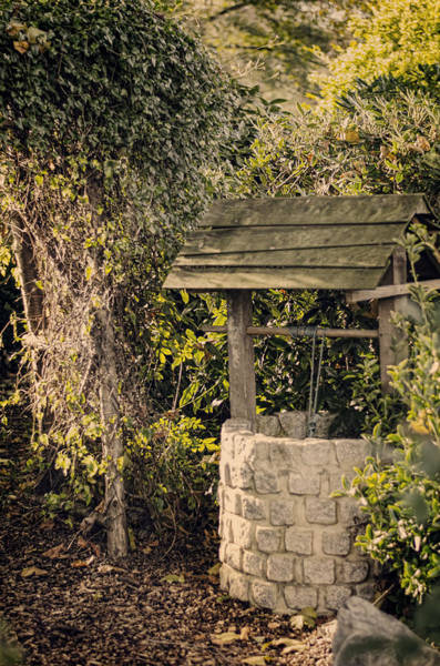 Photograph - Wishing Well by Heather Applegate