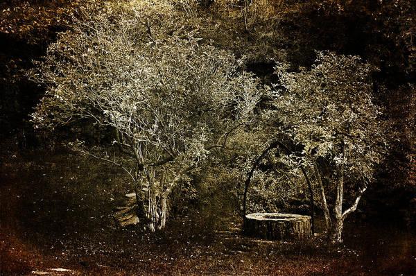 Photograph - Wishing Well by Randi Grace Nilsberg