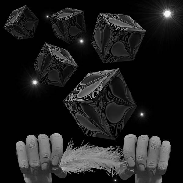 Digital Art - With The Lightest Touch Bw by Barbara St Jean