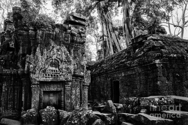 Photograph - Within Ta Prohm by Julian Cook
