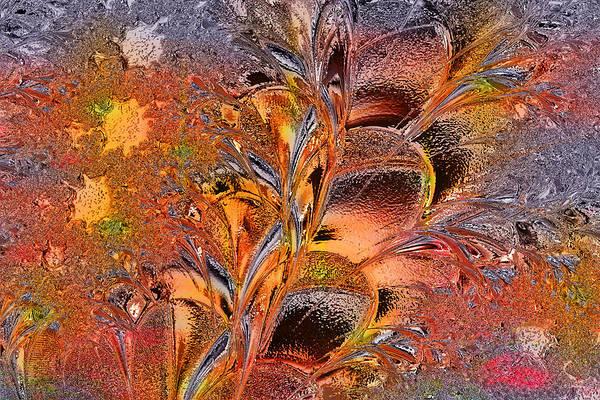 Wall Art - Digital Art - Within The Glass by Paula Ayers