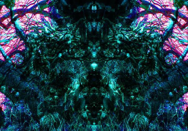 Digital Art - Within Transcendence by Christophe Ennis
