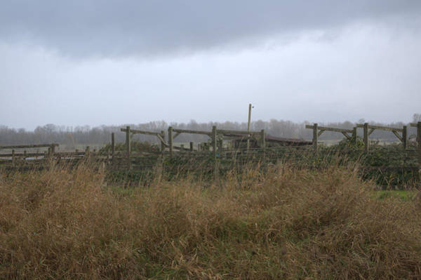 Fence Mixed Media - Withstanding The Elements by Heather L Wright