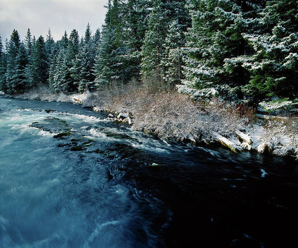 Deschutes River Photograph - Wizard Falls On The Metolius River by Panoramic Images