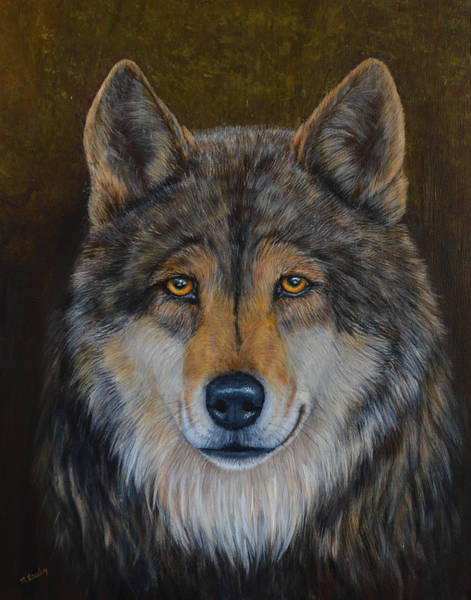 Painting - Wolf Alpha by Nancy Lauby