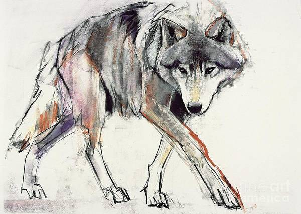 Wall Art - Painting - Wolf  by Mark Adlington