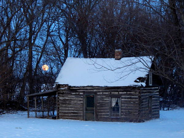 Photograph - Wolf Moon Cabin by Wild Thing