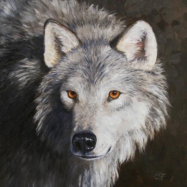North American Wildlife Wall Art - Painting - Wolf Portrait by Crista Forest
