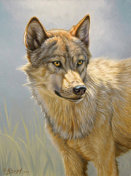 Wolf Painting - Wolf Portrait by Paul Krapf