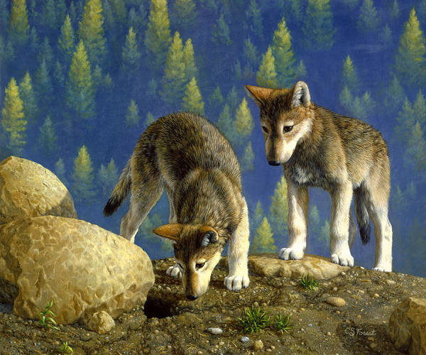 Pup Painting - Wolf Pups - Anybody Home by Crista Forest