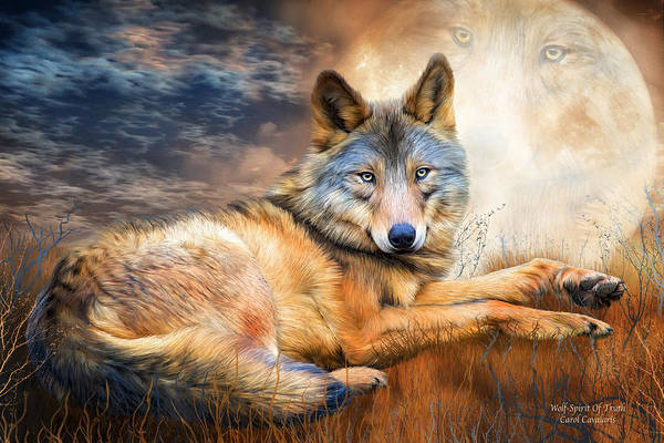 Wall Art - Mixed Media - Wolf - Spirit Of Truth by Carol Cavalaris