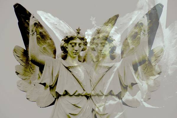 Photograph - Wolfes Angel Reflected by Alice Gipson