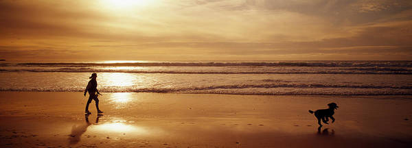 Wall Art - Photograph - Woman And Dog On The Beach, Ocean by Animal Images