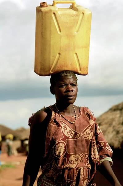 Wall Art - Photograph - Woman Carrying Water by Mauro Fermariello/science Photo Library