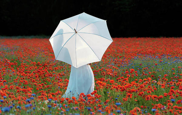 Red Dress Photograph - Woman Holding White Umbrella Standing by Relaxfoto.de