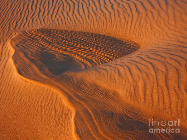 Photograph - Woman In The Dunes by Beth Sargent