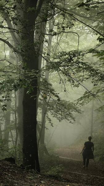 Casual Photograph - Woman Jogging In The Misty Forest by Susan.k.