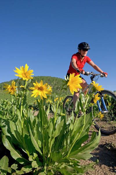 Endurance Wall Art - Photograph - Woman Mountain Biking, Colorado by J.C. Leacock