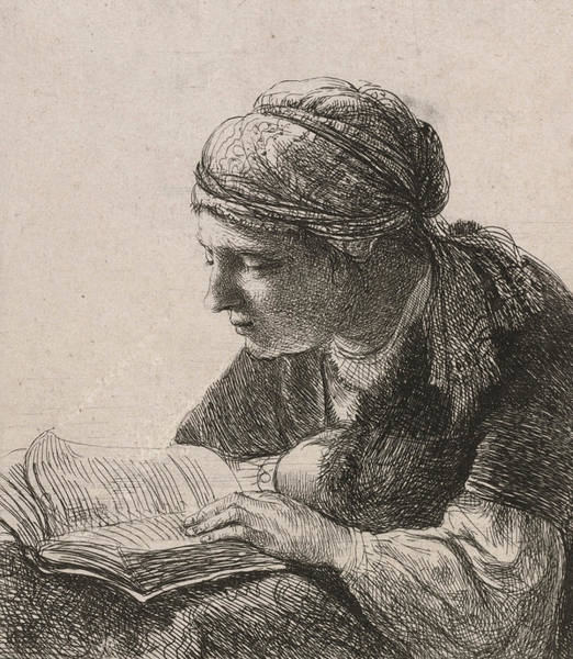 Woman Reading Wall Art - Drawing - Woman Reading by Rembrandt