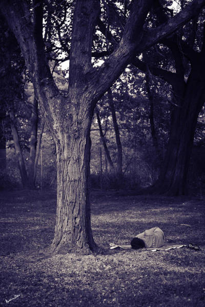 Wall Art - Photograph - Woman Under A Tree by Madeline Ellis
