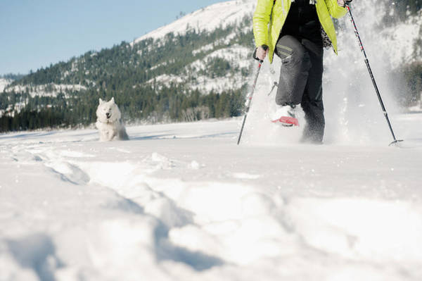 Donner Photograph - Woman Snow Shoeing With A Husky by Jayms Ramirez