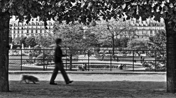 Photograph - Woman Walking Dog In The Tuileries Gardens - Paris by Barry O Carroll