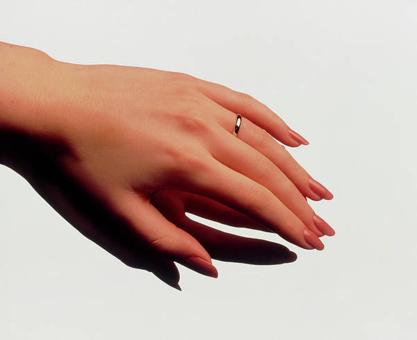 Manicure Wall Art - Photograph - Woman's Manicured Hand With Polished Fingernails by Phil Jude/science Photo Library