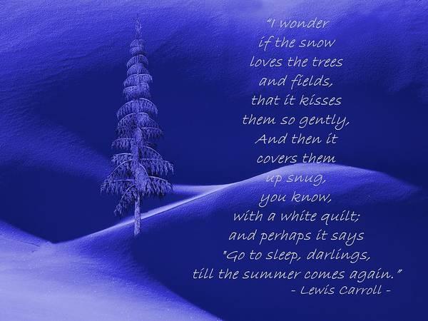 Dehner Digital Art - Wonder If The Snow Loves The Trees by David Dehner