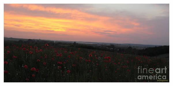 Galicia Photograph - Wonderful Poppy Fields Galicia. by  Andrzej Goszcz