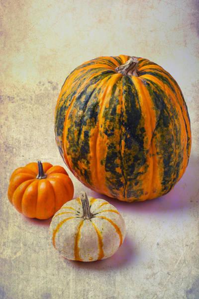 Edible Photograph - Wonderful Pumpkins by Garry Gay