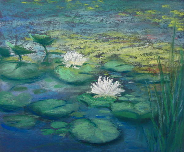 Pastel - Wonders In Water by Sherri Anderson