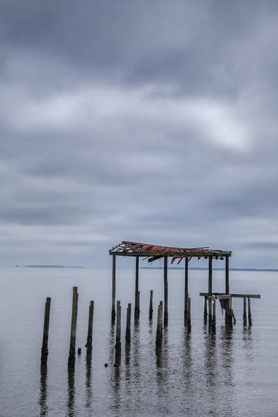Wall Art - Photograph - Won't Let Go by Jon Glaser