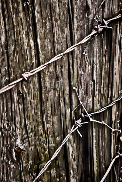 Knot Hole Photograph - Wood And Wire  by Greg Jackson