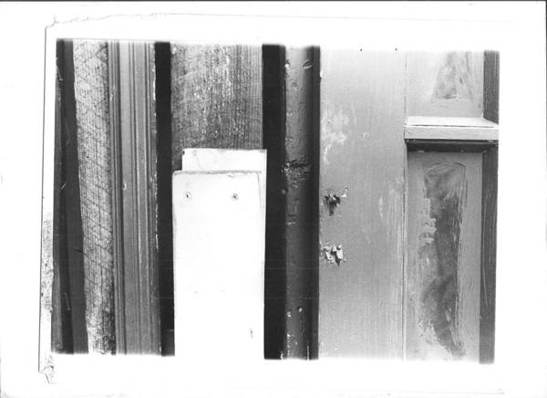 Photograph - Wood by Bc Adamkowski