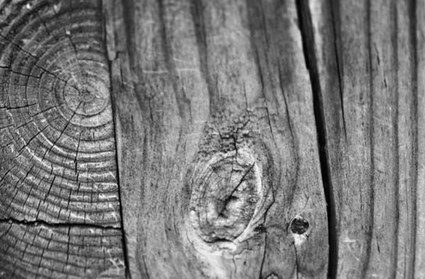 2x4 Wall Art - Photograph - Wood Black And White by Dan Sproul