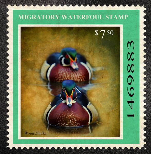 Wall Art - Photograph - Wood Duck Stamp by Steve McKinzie