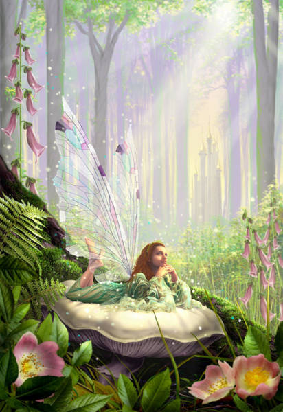 Castle Garden Photograph - Wood Fairy by MGL Meiklejohn Graphics Licensing