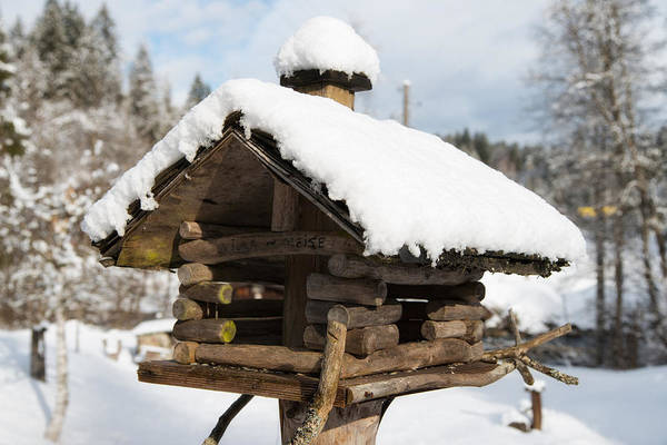 Photograph - Wooden Bird House In Winter With Snow by Matthias Hauser