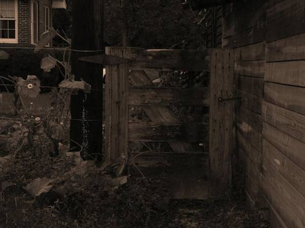 Photograph - Wooden Gate by Cleaster Cotton