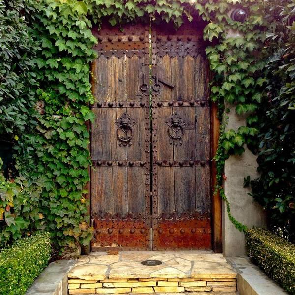 Wall Art - Photograph - Wooden Gate by Julie Gebhardt