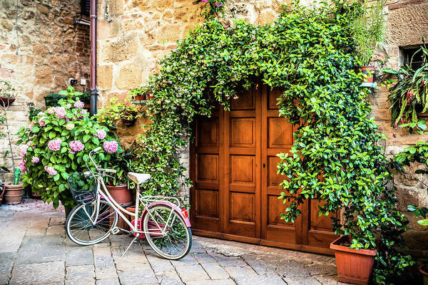 Street Photograph - Wooden Gate With Plants In An Ancient by Giorgiomagini