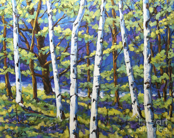 Art In Canada Painting - Woodland Birches by Richard T Pranke