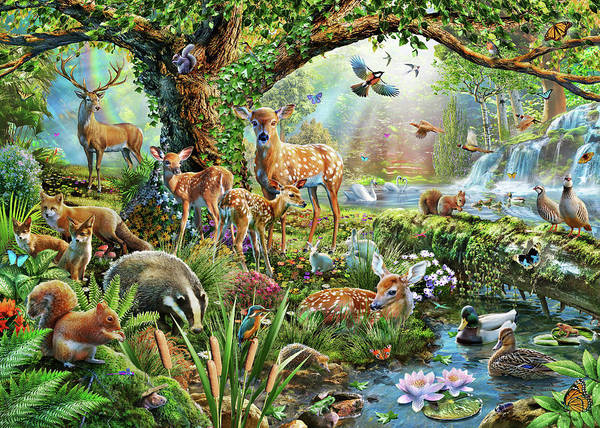 Fox River Wall Art - Drawing - Woodland Creatures by MGL Meiklejohn Graphics Licensing