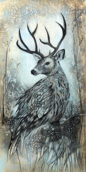 Wall Art - Drawing - Woodland Fable by Sharlena Wood