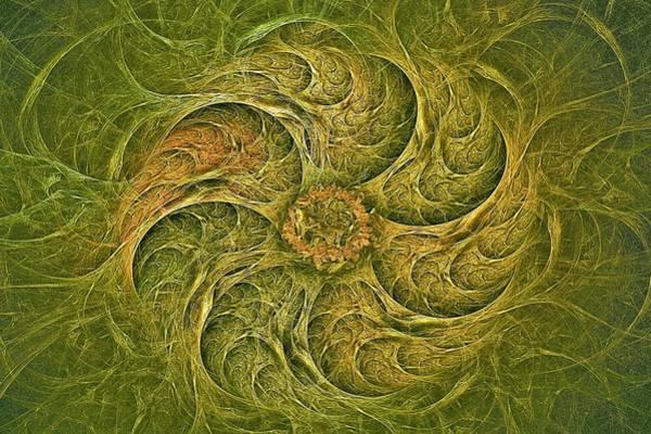 Digital Art - Woodland Gyre by Doug Morgan