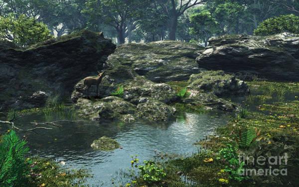 Fairy Pools Digital Art - Woodland Pond by Fairy Fantasies