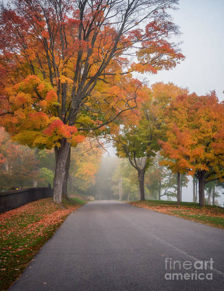 Photograph - Woodlawn Fall Wonder Winona Minnesota by Kari Yearous