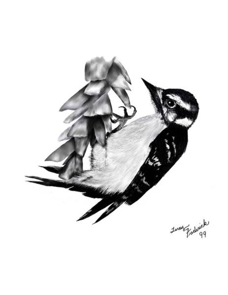 Digital Art - Downy Woodpecker by Terry Frederick