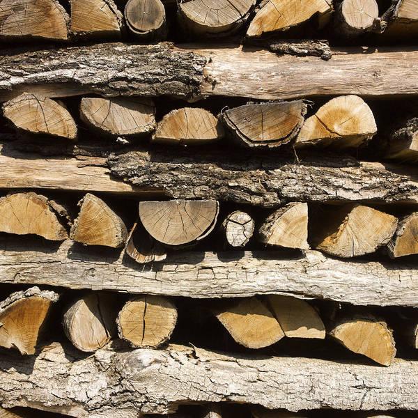 Filling Photograph - Woodpile. by Bernard Jaubert