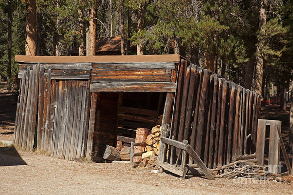 Photograph - Woodshed On The Holzwarth Historic Site by Fred Stearns
